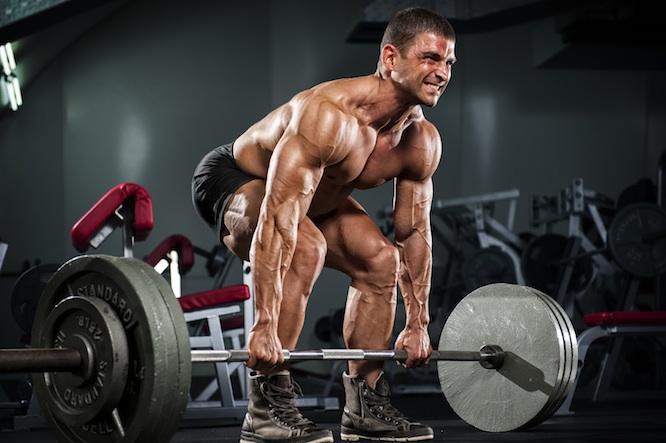 deadlift訓練肌肉