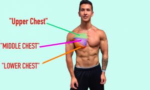 上胸肌下胸肌訓練