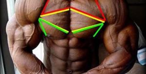 下胸肌訓練
